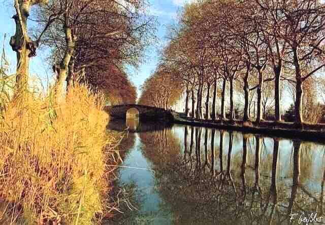 Kanal du Midi bei Portiragnes